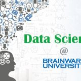 Data Scientist, software engineering, BTech In computer science